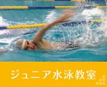 ジュニア水泳教室